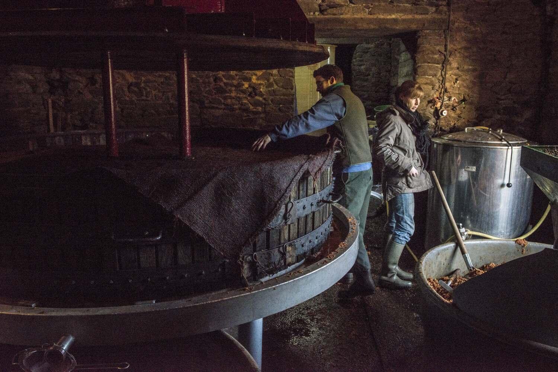 producteur de cidre à Guimaëc (29), fournisseur de l'Elysée.